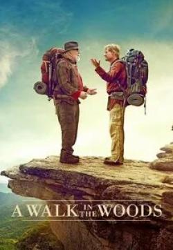 кадр из фильма Прогулка по лесам