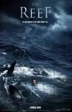 кадр из фильма Риф