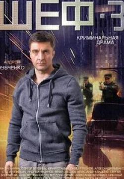 Ян Цапник и фильм Шеф. Новая жизнь