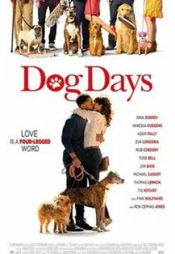 кадр из фильма Собачьи дни