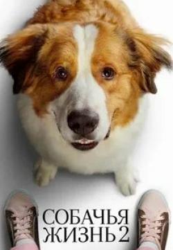 кадр из фильма Собачья жизнь 2